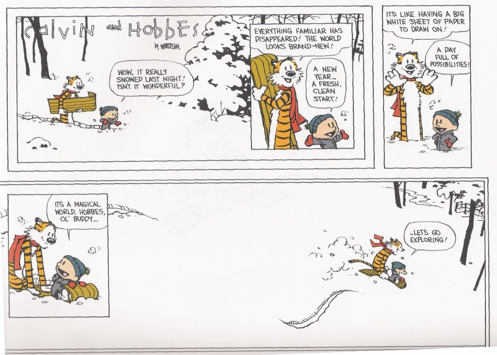 Dec 31, 1995 strip of Calvin and Hobbes by Bill Watterson